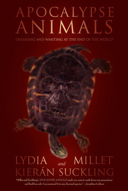 Skull turtle_008